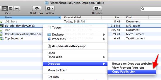 Dropbox Copy Public Link