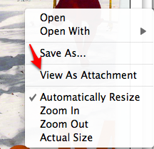 Evernote View As Attachment