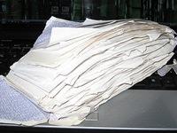 Envelope full of receipts