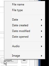 FileJuggler Variables