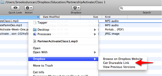 Dropbox Shareable Link